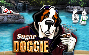 SUGAR DOGGIE